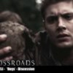 The Crossroads Videocast (EP15): 'Bugs' – Discussion
